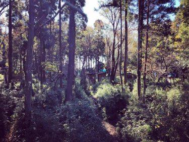 千葉県の森林タイプのサバゲーフィールド15選