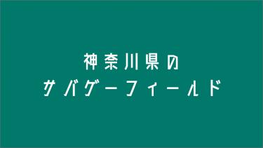 神奈川県のサバゲーフィールド6選