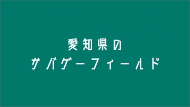 愛知県のサバゲーフィールド11選