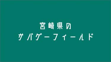 宮崎県のサバゲーフィールド6選