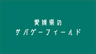 愛媛県のサバゲーフィールド3選