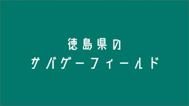 徳島県のサバゲーフィールド2選+α